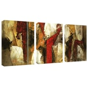 "Trademark Fine Art 14"" x 19"" Canvas Gallery Wrapped"