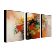 "Trademark Fine Art 24"" x 16"" UV Coated, Water Resistant Canvas & Wooden Bar Gallery Wrapped Art"