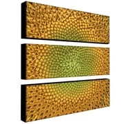 "Trademark Fine Art 10"" x 32"" Canvas Gallery Wrapped Art"