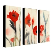 "Trademark Fine Art 10"" x 24"" Wooden Frame Gallery Wrapped Canvas Art"
