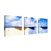 "Trademark Fine Art 18"" x 18"" Wood Gallery Wrapped Canvas Art"