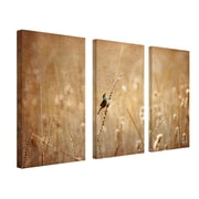 "Trademark Fine Art 32"" x 16"" Canvas Wall Art"
