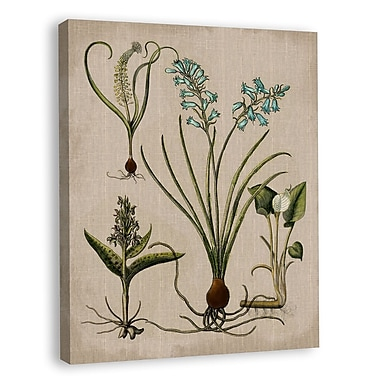 Melissa Van Hise Lilies III Graphic Art on Wrapped Canvas