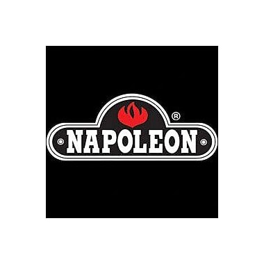Napoleon Roof Terminal Kit for The Dream Fireplace; 1/12 to 7/12 Pitch