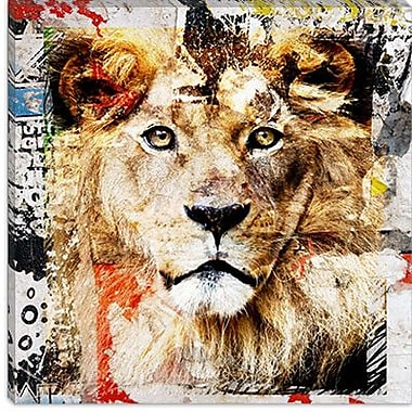 iCanvas ''Lion'' by Luz Graphics Painting Print on Canvas; 18'' H x 18'' W x 0.75'' D