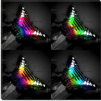 iCanvas Rainbow Colored Butterfly Painting Print on Canvas; 18'' H x 18'' W x 1.5'' D