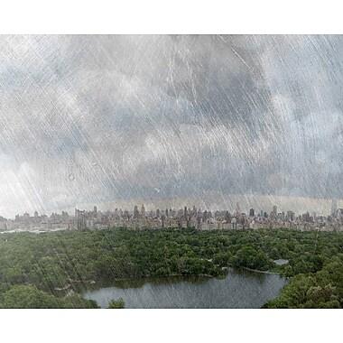 Carlyle Fine Art Landscape Central Park by Jordan Carlyle Photographic Print; 36'' x 48''