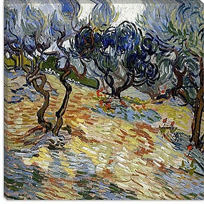 iCanvas ''Olive Trees'' by Vincent van Gogh Painting Print on Canvas; 26'' H x 26'' W x 0.75'' D