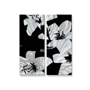 All My Walls 'Black Lilies' by Ruth Palmer 2 Piece Painting Print Plaque Set