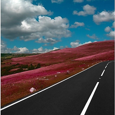 Carlyle Fine Art Landscape Road Less Traveled by Jordan Carlyle Photographic Print; 36'' H x 36'' W