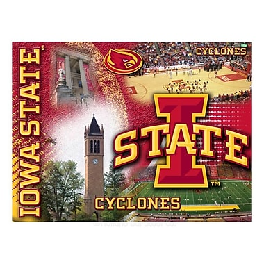 Holland Bar Stool NCAA Graphic Art on Canvas; Iowa State