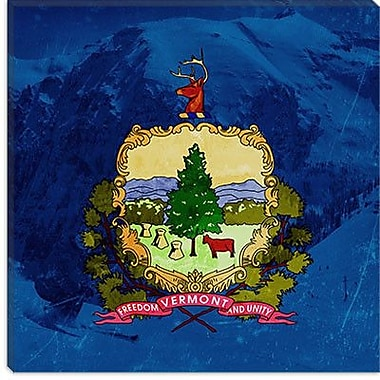 iCanvas Flags Vermont Skiing Graphic Art on Wrapped Canvas; 18'' H x 18'' W x 0.75'' D