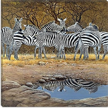 iCanvas 'Zebras' by Harro Maass Graffiti Graphic Art on Canvas; 37'' H x 37'' W x 1.5'' D
