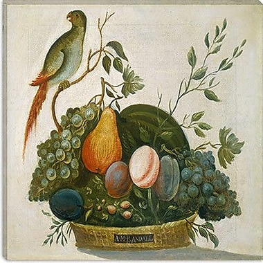 iCanvas Floral and Botanical ''Basket of Fruit w/ Parrot'' by Jung Ho Hwang Painting Print on Canvas