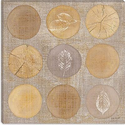 iCanvas 'Circles of Life' by Lisa Audit Graphic Art on Canvas; 18'' H x 18'' W x 1.5'' D