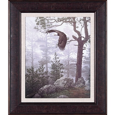 Art Effects Shrouded Forest by Daniel Smith Framed Photographic Print; 28'' x 24''