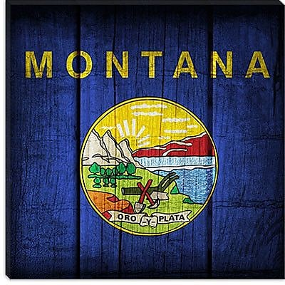 iCanvas Flags Montana Planks Graphic Art on Canvas; 12'' H x 12'' W x 0.75'' D