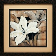 North American Art 'Dramatic Lily Grid I' by Tim O'Toole Framed Painting Print