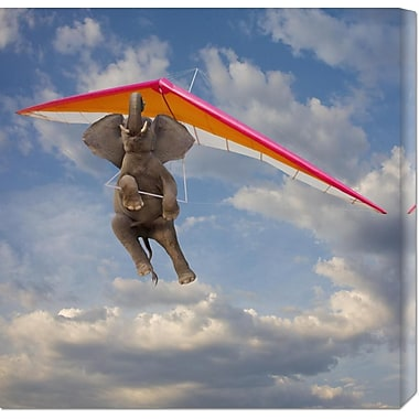 Global Gallery 'Flying Elephant' by John Lund Graphic Art on Wrapped Canvas