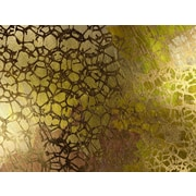 Carlyle Fine Art Abstract Golden Nest by Jordan Carlyle Graphic Art; 15'' x 20''