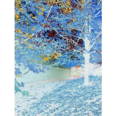 Carlyle Fine Art Nature Falling by Jordan Carlyle Graphic Art; 48'' x 36''