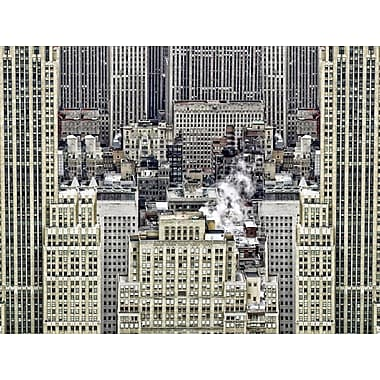 Carlyle Fine Art Architecture Inception by Jordan Carlyle Photographic Print; 54'' x 72''