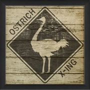 The Artwork Factory Ostrich Xing Framed Graphic Art