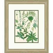 Melissa Van Hise Emerald Foliage ll Framed Graphic Art