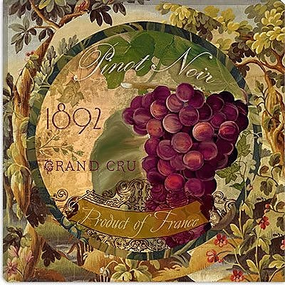iCanvas ''Wines of France (Grape)'' Canvas Wall Art by Color Bakery; 18'' H x 18'' W x 1.5'' D