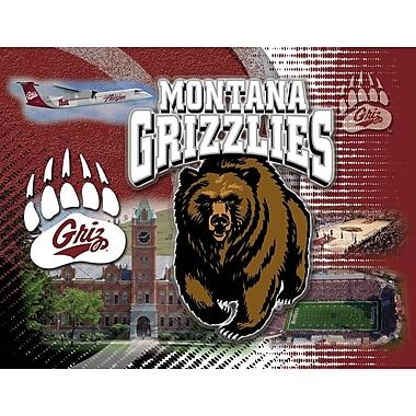 Holland Bar Stool NCAA Graphic Art on Canvas; Montana