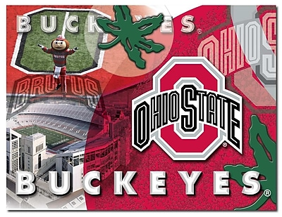 Holland Bar Stool NCAA Graphic Art on Canvas; Ohio State