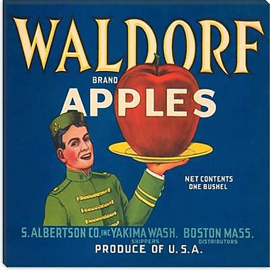 iCanvas Waldorf Apples Vintage Crate Label Canvas Wall Art; 26'' H x 26'' W x 1.5'' D