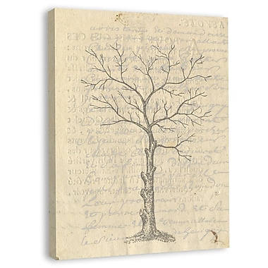 Melissa Van Hise Tree Branches I Framed Graphic Art