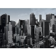 Carlyle Fine Art Architecture Vertical Beauty by Jordan Carlyle Photographic Print; 54'' x 72''