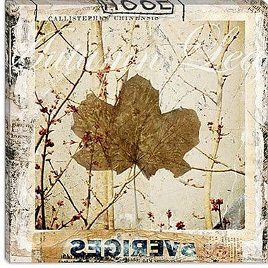 iCanvas ''Autumn Leaf'' by Luz Graphics Graphic Art on Canvas; 18'' H x 18'' W x 1.5'' D