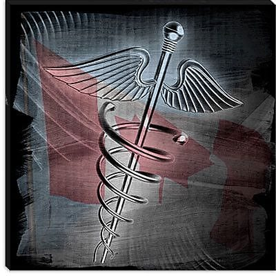 iCanvas Canadian Health Care #3 Graphic Art on Canvas; 26'' H x 26'' W x 0.75'' D