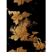 Carlyle Fine Art Nature Autumn by Jordan Carlyle Graphic Art; 72'' x 54''