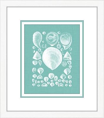 Melissa Van Hise Coquillage IV Framed Graphic Art; Azure