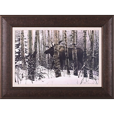 Art Effects A Walk In The Woods by Stephen Lyman Framed Photographic Print; 29'' x 39''
