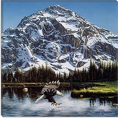 iCanvas ''Mountain Majesty'' by John Van Straalen Photographic Print on Canvas