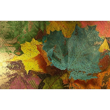 Carlyle Fine Art Nature Autumn Dissolve by Jordan Carlyle Graphic Art; 15'' x 20''