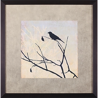 Art Effects Perched by Allison Pearce Framed Painting Print