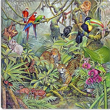 iCanvas ''The Rainforest'' by Tim Knepp Painting Print on Wrapped Canvas; 26'' H x 26'' W x 1.5'' D