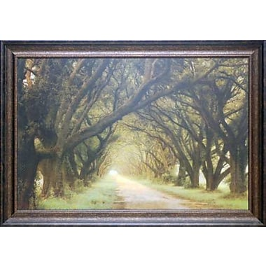 North American Art 'Evergreen Alley' Framed Photographic Print