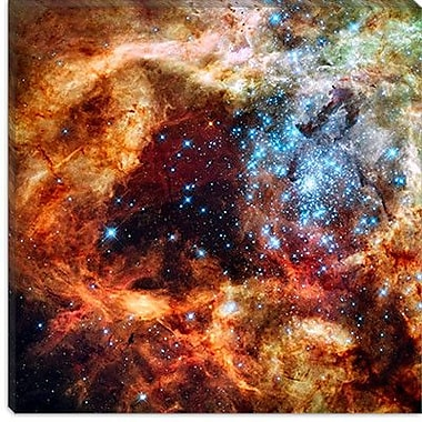 iCanvas Astronomy and Space R136 Star Cluster Graphic Art on Canvas; 18'' H x 18'' W x 0.75'' D