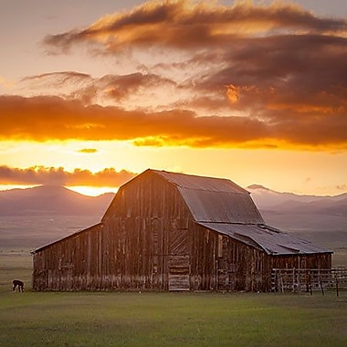 iCanvas ''Wet Mountain Barn ll'' by Dan Ballard Photographic Print on Wrapped Canvas