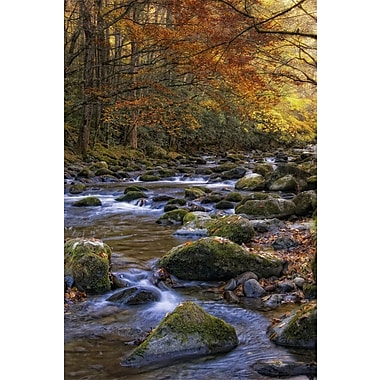 Art Effects Autumn on Little River by Danny Head Photographic Print on Canvas