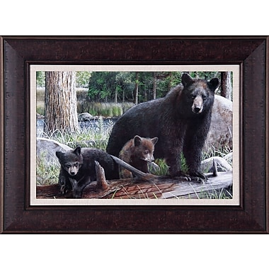 Art Effects New Discoveries by Kevin Daniel Framed Photographic Print; 29'' x 39''