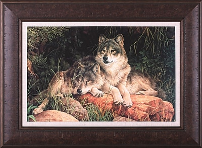 Art Effects Soulmates by Larry Fanning Framed Photographic Print; 29'' x 39''