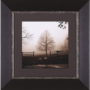 Art Effects Morning Texture by Harold Silverman Framed Photographic Print